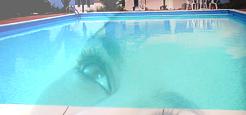 Flirteando con una chica joven en una piscina de urbanización