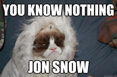 grumpy cat ygritte