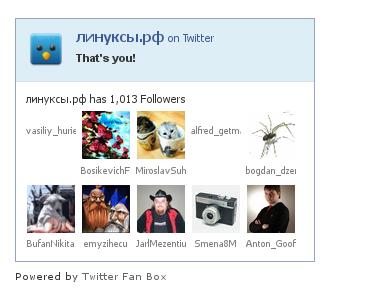 Twitter Fan Box