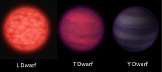brown dwarf family