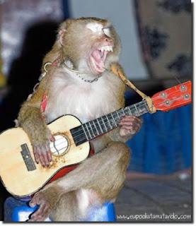 Macaco haciendo un solo. Murió a los 27 años en extrañas circunstancias.