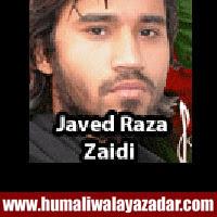 http://ishqehaider.blogspot.com/2013/11/javed-raza-zaidi-nohay-2014.html