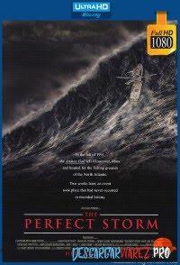 Una tormenta perfecta (2000) 1080p Latino