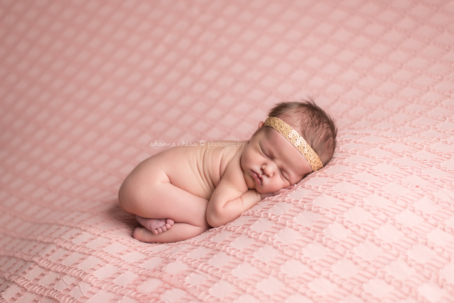 eugene springfield or newborn photography pink