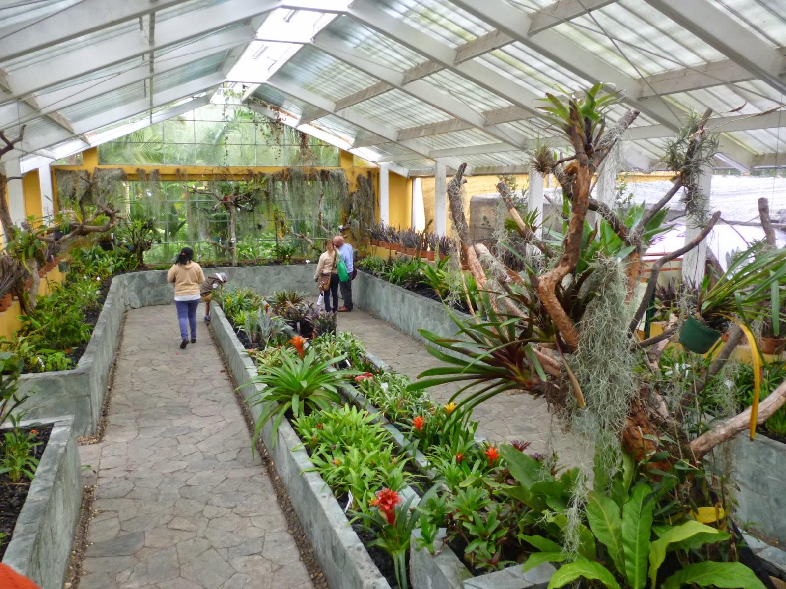 Fundacionideagenial el jardin bot nico de bogot es un for Jardin botanico de liubliana