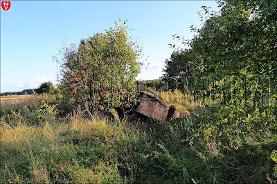 Пятый немецкий бункер в деревне Ходаки