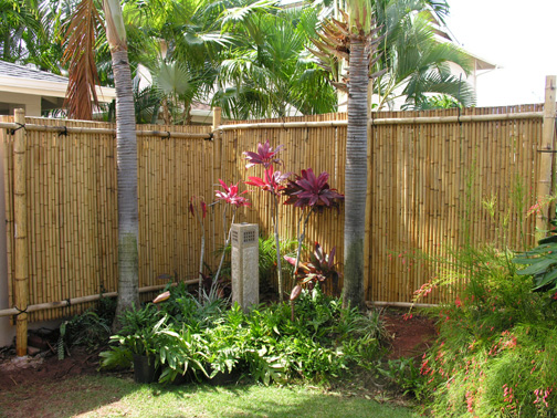 Quality bamboo and asian thatch wall covering s 39 bamboo for Pretty fencing ideas