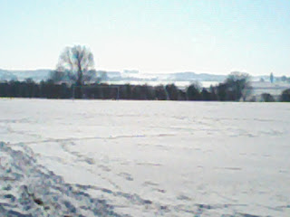 snowy fields
