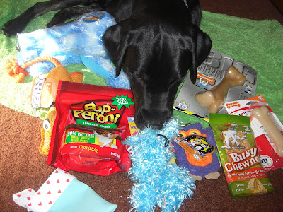 Picture of Rudy with all of his amazing goodies (from blogging friends AND family)