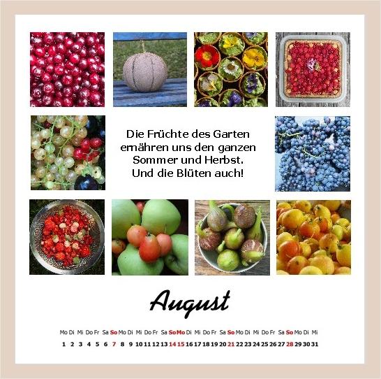 Vielfältige Früchte des Sommers
