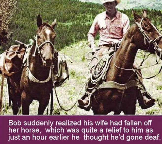 Humor from Natural Horsemanship --Rick Gore
