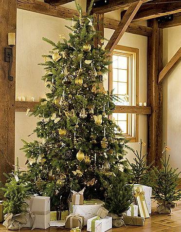 rustic20christmas20tree2 Decoração de Natal: Você sabe quando deve montar a árvore de Natal?