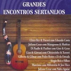 Download Grandes Encontros Sertanejos Torrent
