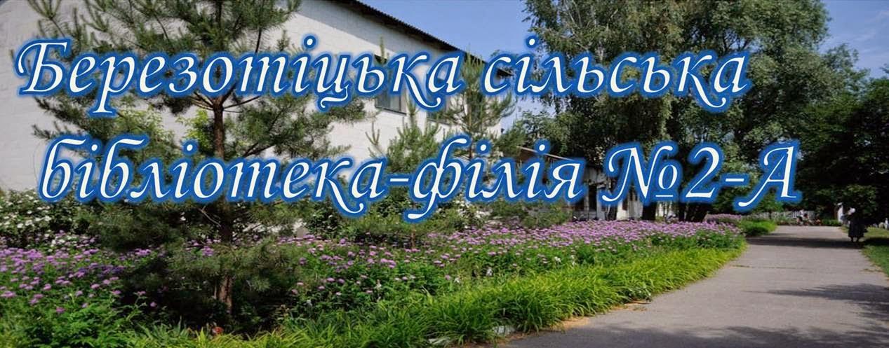 Березотіцька  сільська бібілотека-філія №2-А