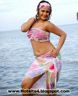 Indian Actress Photos, South Indian Actress Pictures, Bollywood 2014