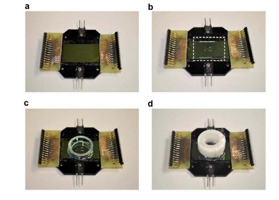 Neuronal 3D Chip
