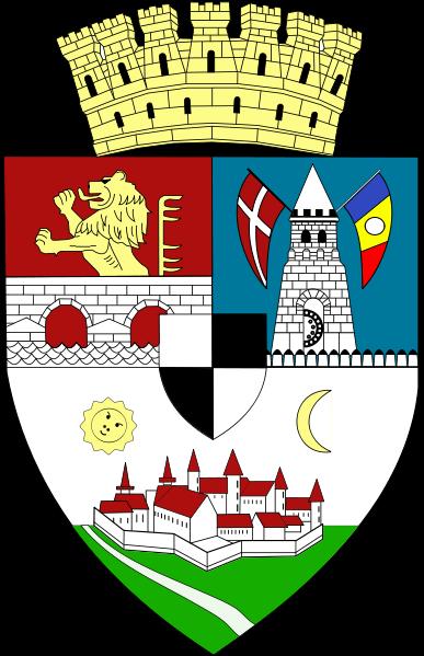 Chat Timisoara