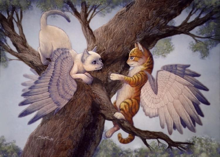 wingcats.jpg