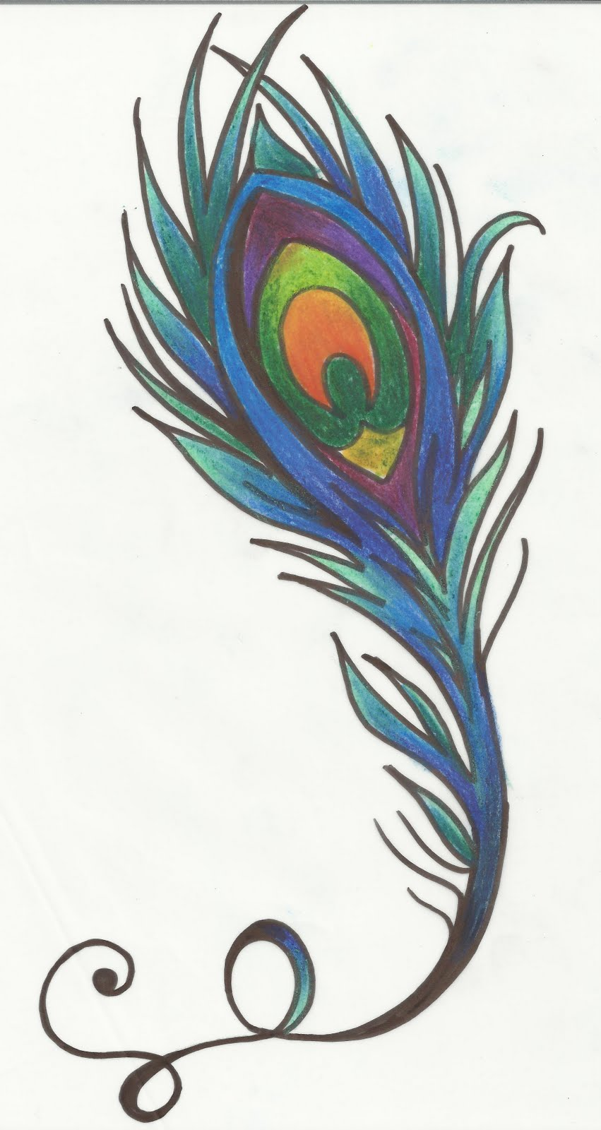 Peacock feather drawing tattoo - photo#4