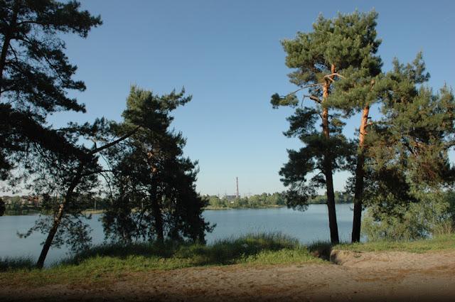 Фото Виталия Бабенко: Киев, сосны,озеро Алмазное