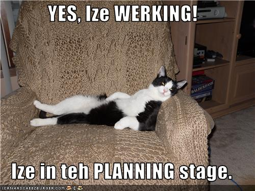 Lolcat thesis