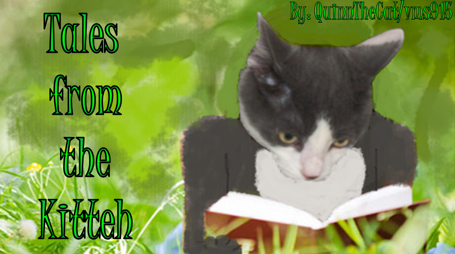 Tales from the Kitteh --By Quinn