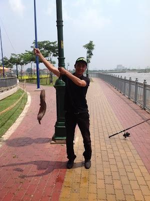 cách làm mồi cá trê