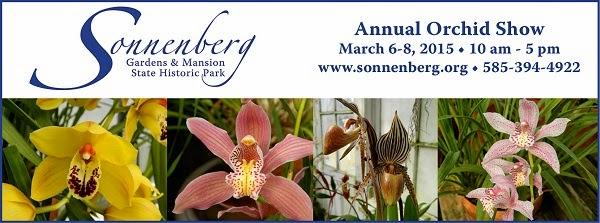 Sonnenberg Orchid Show