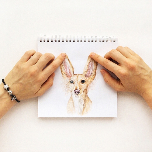 14-Listen-well-Valerie-Susik-Валерия-Суслопарова-Cats-and-Dogs-Interactive-Animal-Drawings-www-designstack-co