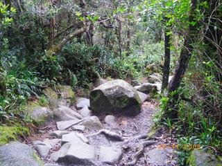 alam semulajadi ialah elemen asal kejadian Allah atas muka bumi
