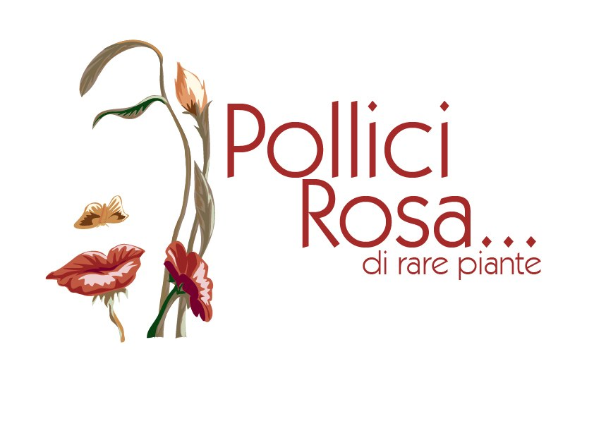 Pollici Rosa... di rare piante