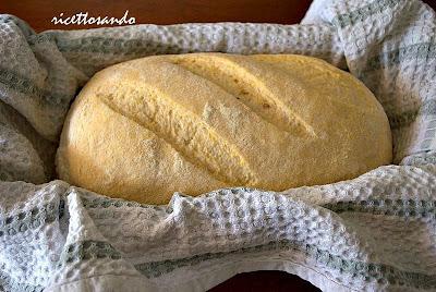 pane giallo con lievito madre prima della cottura