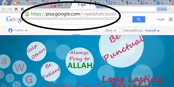 How To Get A Custom URL For Google Plus Profile And Page