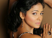 Actress Subhiksha Portfolio photos-thumbnail-7