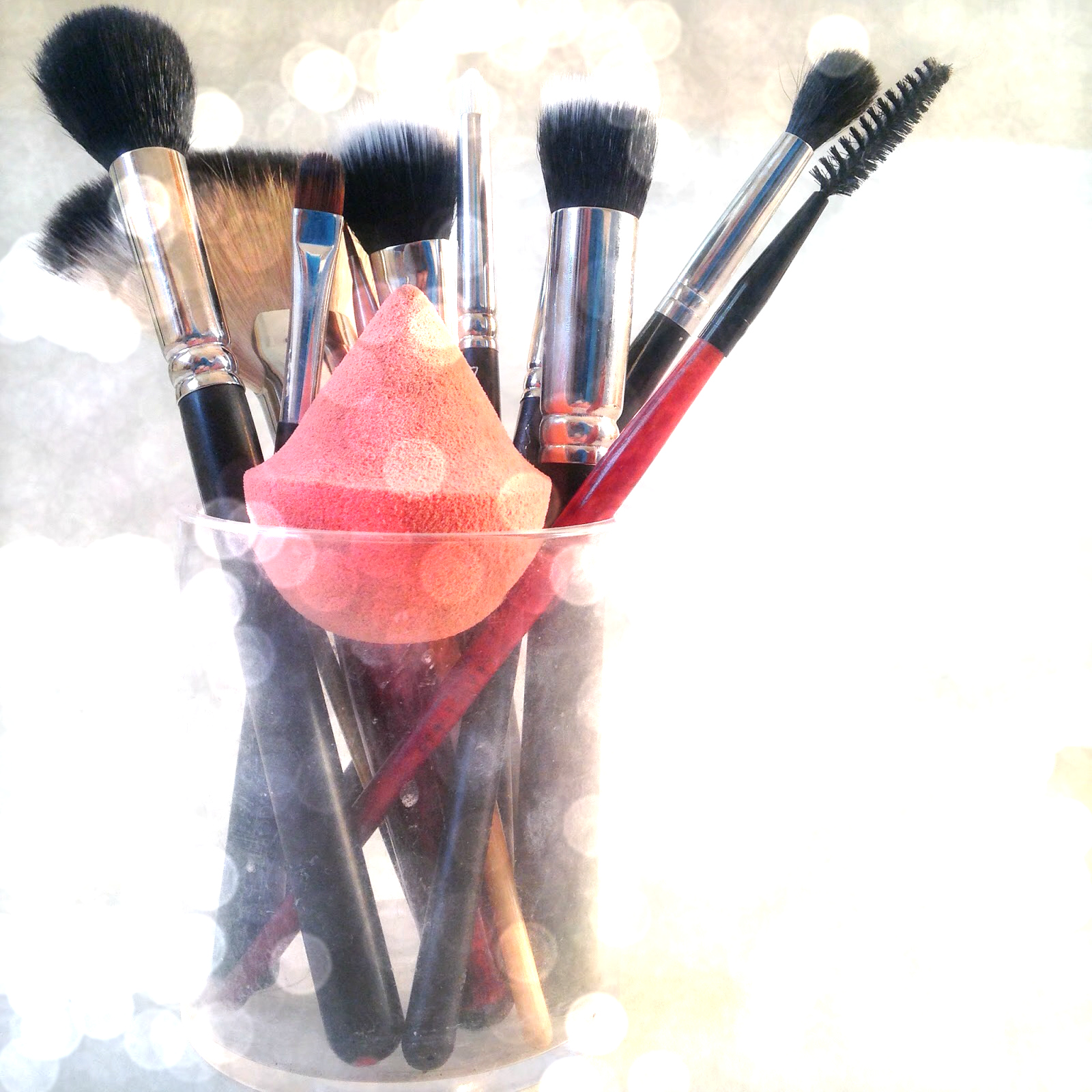 Daily Make Up Brushes