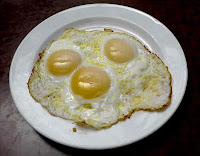 Egg for Weight Loss Program