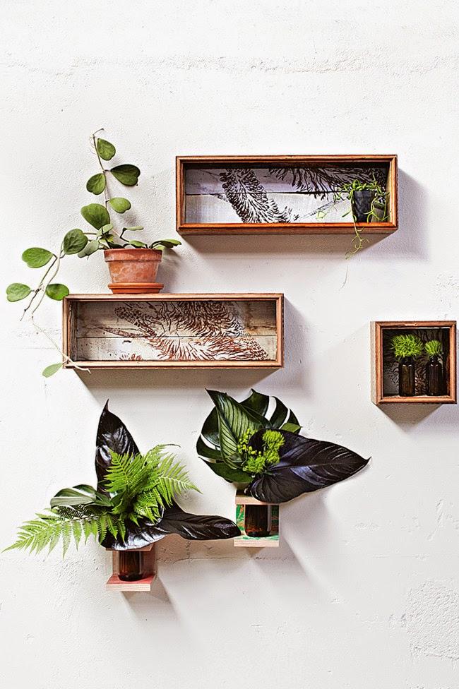 catalogo plantas interior 10 maneiras incr veis de usar plantas de interior