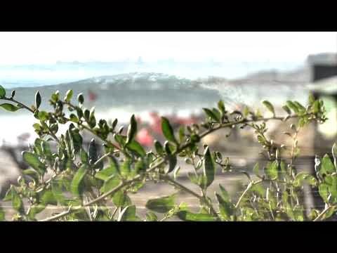 ASP Prime Cascais Billabong Pro Teaser