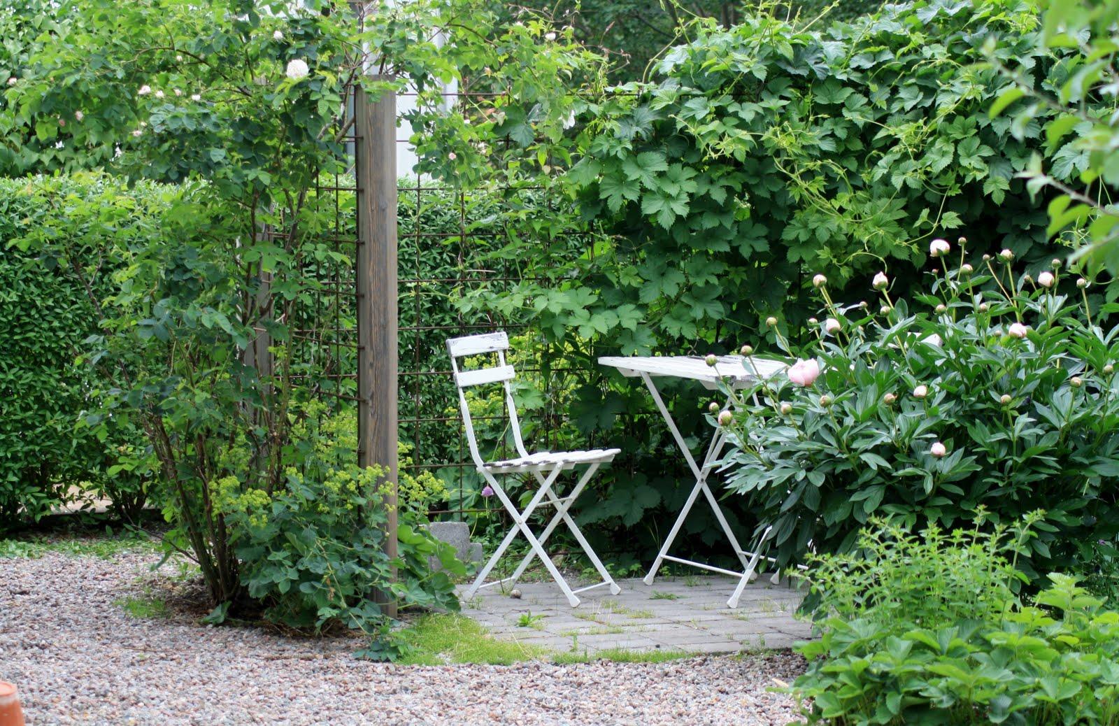 Trädgård på berget: i midsommartid