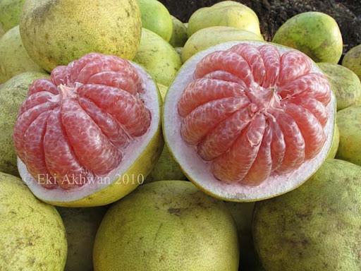 Image result for jeruk pamelo pasar