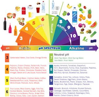 Makanan asid dan alkali