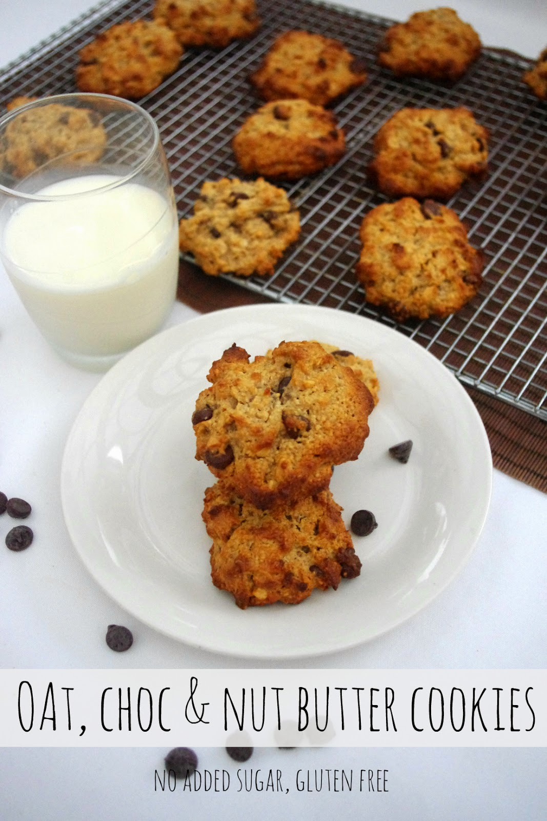 Oat-chocolate-nut-butter-cookies