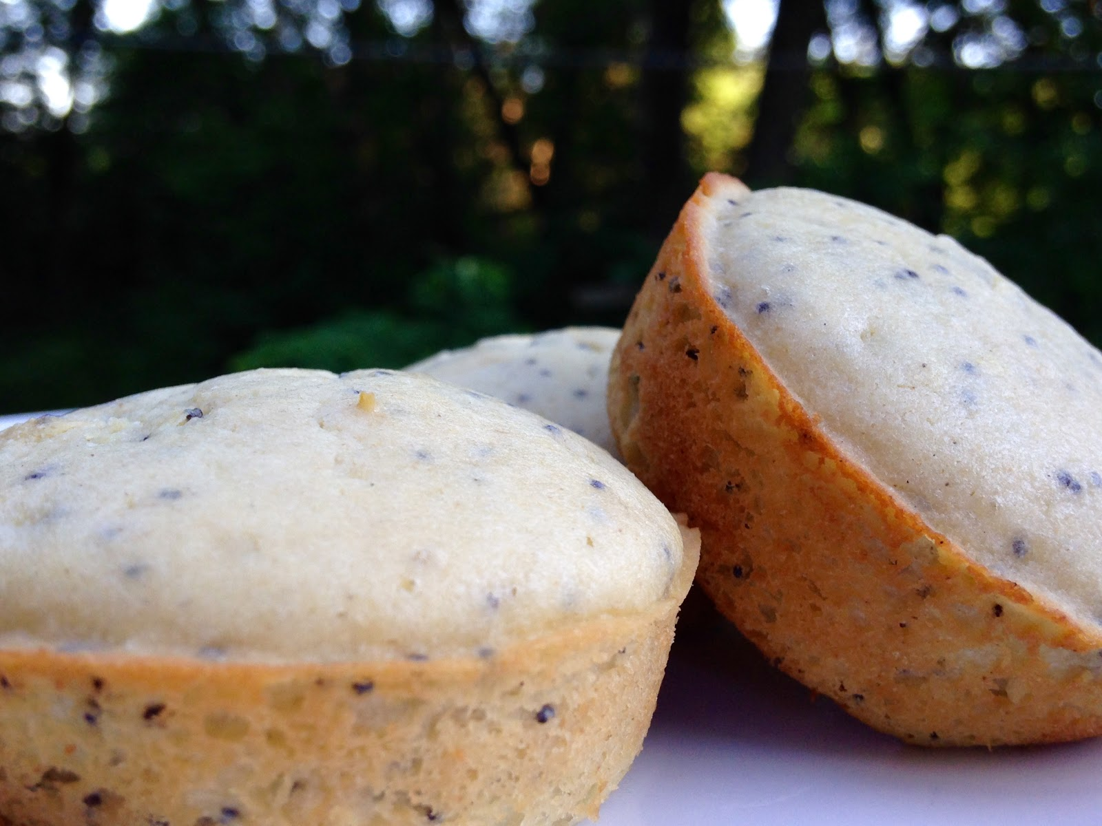 Bread, Brownies, and Beyond: Gluten Free Lemon Poppy Seed Muffins