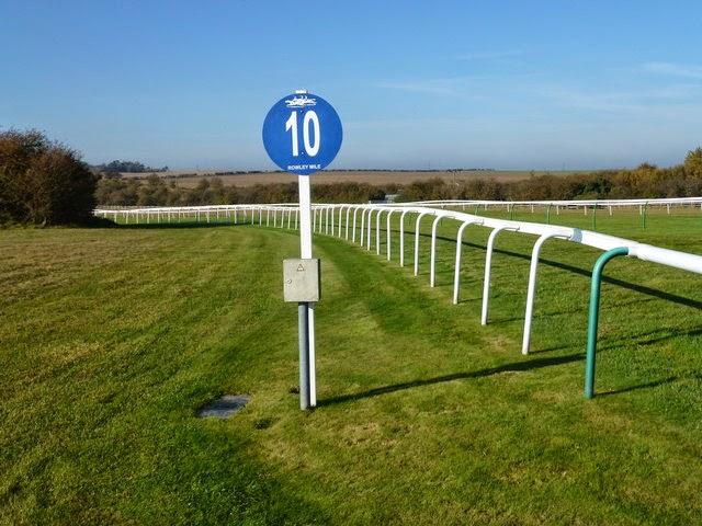 Superior Ten Furlong Marker At The Newmarket Race