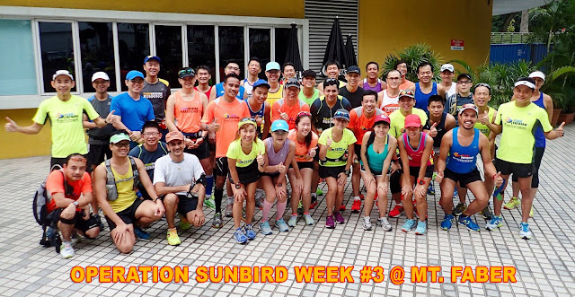 Sunbird Week #3: Clearer skies for a good hills run