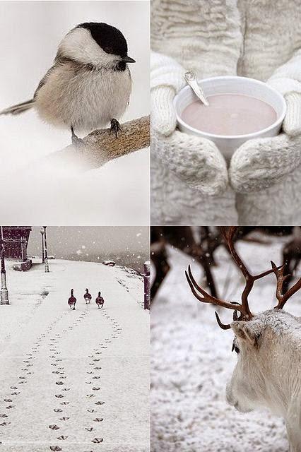 ❅ ❄ ❅ Enero ❅ ❄ ❅