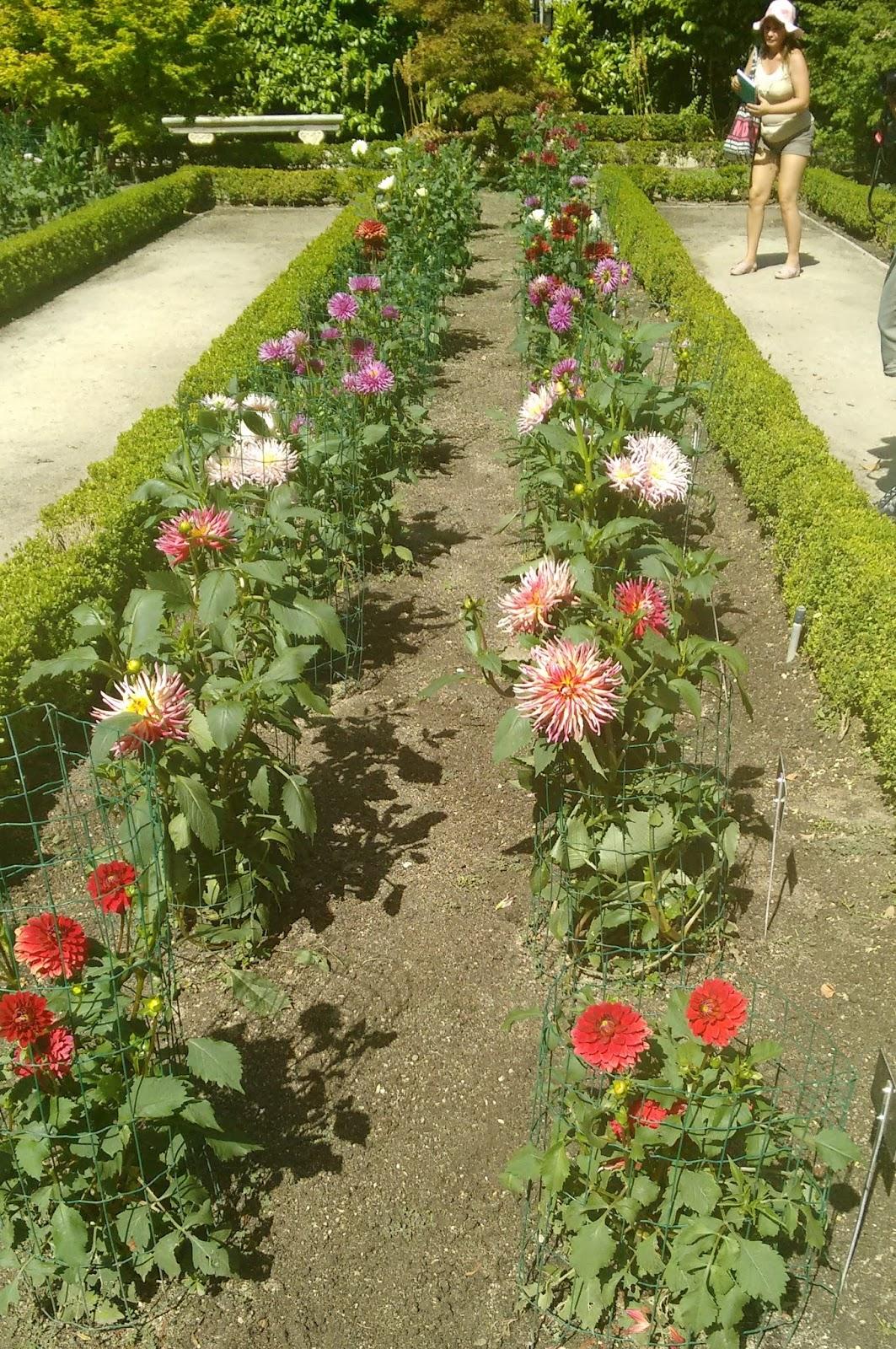 El jardin botanico madrid y sus cosas for Jardin botanico cursos