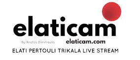 Elati Pertouli Meteora Camera Trikala Greece Ελάτη Περτούλι Μετέωρα Κάμερα