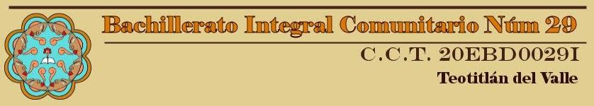 Bachillerato Integral Comunitario N°29
