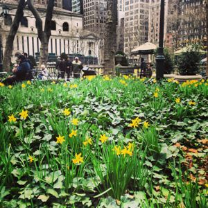 A New York Spring Calendar, 2013